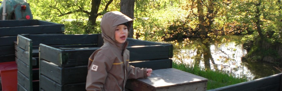 Apple picking with children at Alte Land