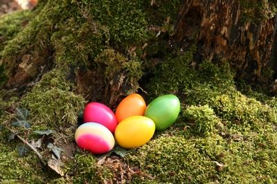 Public egg hunts in Hamburg