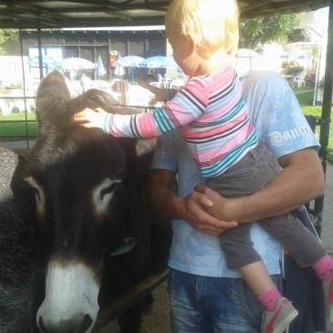 Donkey park Nessendorf